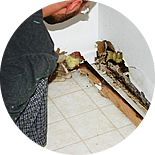 Water Damage in Orange County