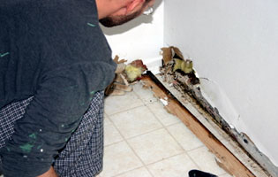 local contractor fixing damage